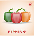set of three fresh sweet peppers green red and vector image