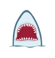 shark jaws vector image