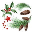 christmas symbols - holly leaves vector image