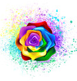 colorful rainbow rose vector image
