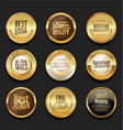 luxury retro badge and labels collection 1 vector image vector image