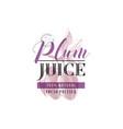 plum juice logo template vector image
