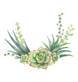 watercolor wreath of cacti and succulent vector image vector image