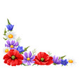 decorative element with summer flowers vector image