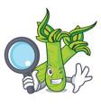 detective wasabi character cartoon style vector image vector image