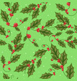 mistletoe branch with green leaves for christmas vector image