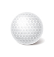 object golf ball vector image