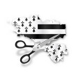 part with nantes cut out scissors from map vector image