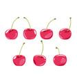 set cherries isolated vector image