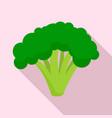 broccoli icon flat style vector image vector image