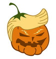 cartoon pumpkin trump face vector image vector image