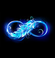 fiery symbol infinity with feather vector image vector image
