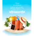 tropical island with palms a beach bag and and vector image vector image