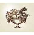 Vintage fruit bowl Sketch vector image vector image