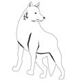 black line wolf icon vector image vector image