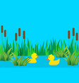 ducklings in lake vector image vector image
