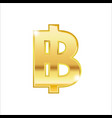 golden baht symbol isolated web icon vector image vector image