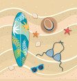 surfboard with hat and bra swimsuit vector image vector image
