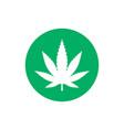 cannabis marijuana leaf icon vector image