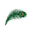 long emerald-green feather of peacock plumage of vector image vector image