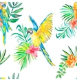 macaw seamless pattern palm leaves and tropical vector image vector image