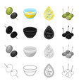 olives berry fruit and other web icon in cartoon vector image vector image