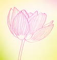 pink abstract flower vector image vector image