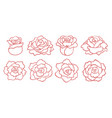 set of outline roses blooms isolated vector image