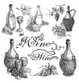 set wine bottle and barrel grapes vector image vector image