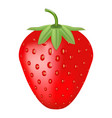 Single fresh ripe strawberry isolated on a white vector image