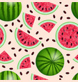 watermelon - a whole from different sides cut vector image vector image