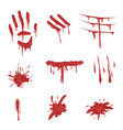 blood spatters set red palm prints finger smears vector image vector image