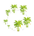 crop cycle for banana tree crop stages bananas vector image