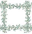 floral card design eucalyptus silver dollar vector image