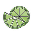 fresh lemon and slice citrus ingredient drink vector image
