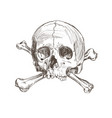 hand drawing skull and bones vector image vector image