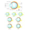 human eye anatomy flat isolated vector image