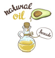 Avocado oil Glass Bottle vector image vector image