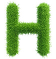 capital letter h from grass on white vector image vector image