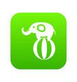 elephant balancing on a ball icon digital green vector image vector image