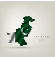 flag pakistan as a country vector image