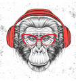hipster animal monkey with headphones vector image