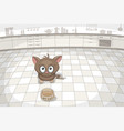 little cat is waiting for food vector image vector image