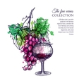 Red Wine With Grape vector image