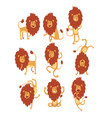 set of funny african lion in different actions vector image vector image
