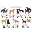 working service and watching dogs collection vector image vector image