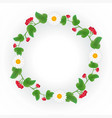 a wreath of viburnum decorated with daisies vector image vector image