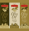 banners for olive oil with countryside landscape vector image