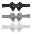 black and white silk bows set ribbon tied vector image vector image