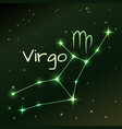 earth symbol of virgo zodiac sign horoscope vector image
